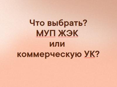 Что лучше, МУП ЖЭК или коммерческая УК, для Крыма?